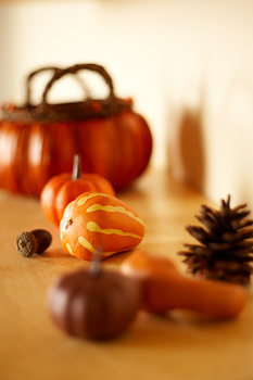 Gourds with acorn and pine cone on shelf