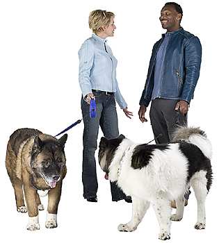 Couple with two dogs on leashes
