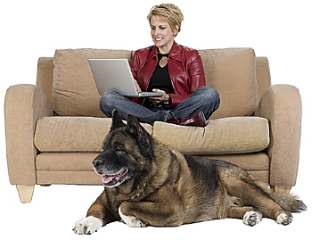 Dog lying by woman on couch with laptop
