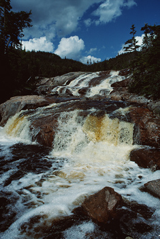 Low angle view of brook with waterfall, Quebec, Canada