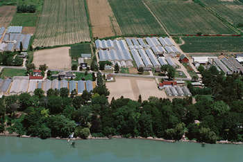 Aerial view of farmland and greenhouses, Canada