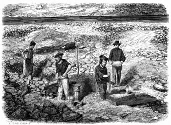 Miners cradling for gold in California during gold rush