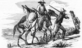 Miners and horses in gold rush