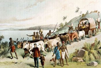 David Livingstone expedition at Lake Ngami in Africa