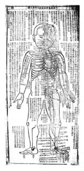 Japanese acupuncture chart