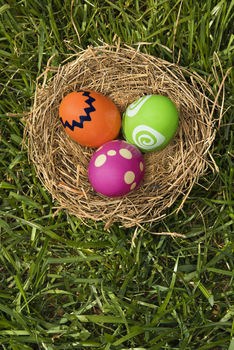 Easter eggs in bird's nest on lawn