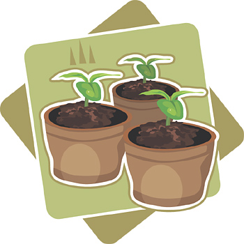 Growing Clipart