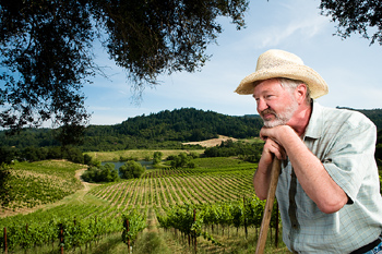 Man leaning on tool at vineyard, Sonoma Valley, California