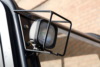 Outdoor light with protective cage