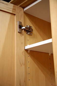Concealed hinge and shelving in cabinet