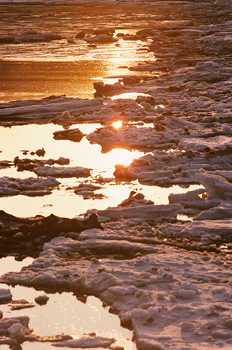 Snow with ice and meltwater at sunset