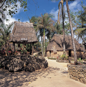 Thatched roof huts and shelters