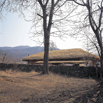 Structure with thatched roof