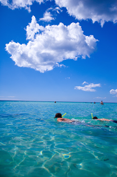 Two men snorkeling with others in tropical seas, Dominican Republic