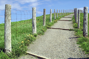 Path with fence