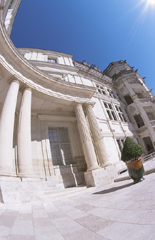 Fisheye view of building exterior with potted plant