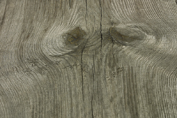 Knotholes in woodgrain