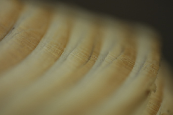 Motion blur of woodgrain