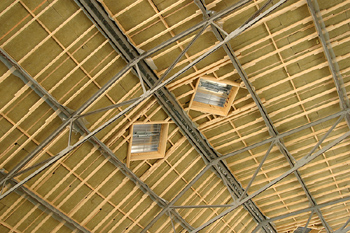 Ceiling with skylights