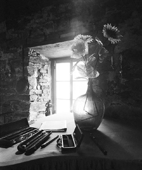 Musical instrument and vase of flowers by sunny window