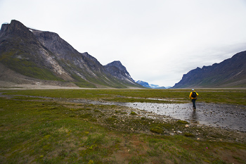 Lone hiker in scenic glacial valley in the Arctic