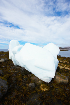 Iceberg beached on rocks by low tide