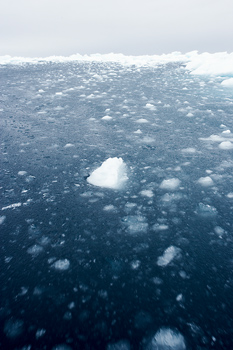 Chunks of drift ice consolidating in Arctic Ocean