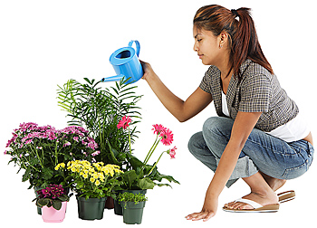 Woman watering houseplants and flowers