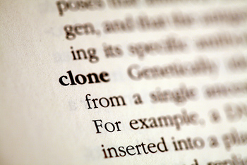 Definition of clone
