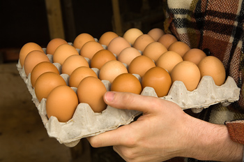 Close-up of man holding tray of fresh eggs