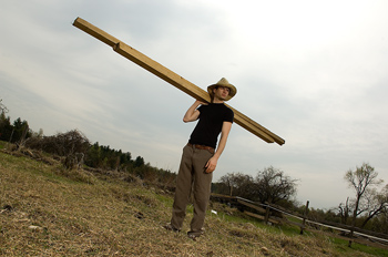 Farmer shouldering lumber in pasture