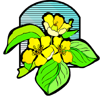 Blossoming Clipart